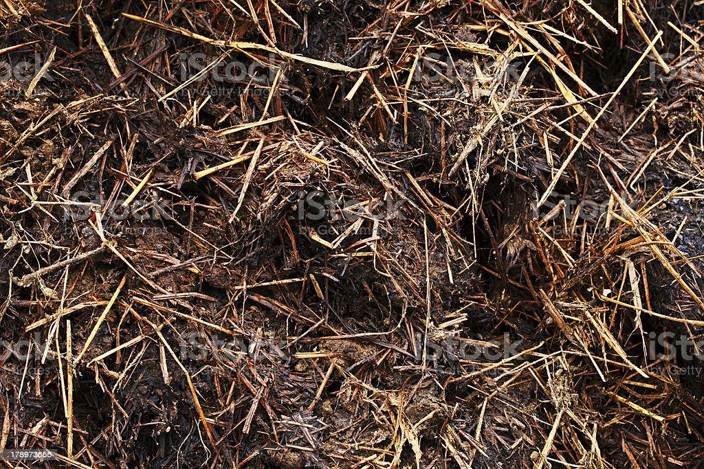Organic compost texture. stock photo