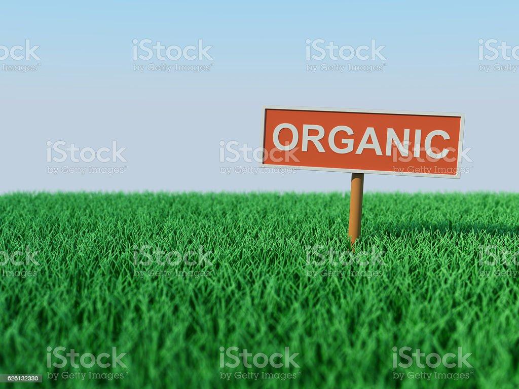 Organic Concept stock photo