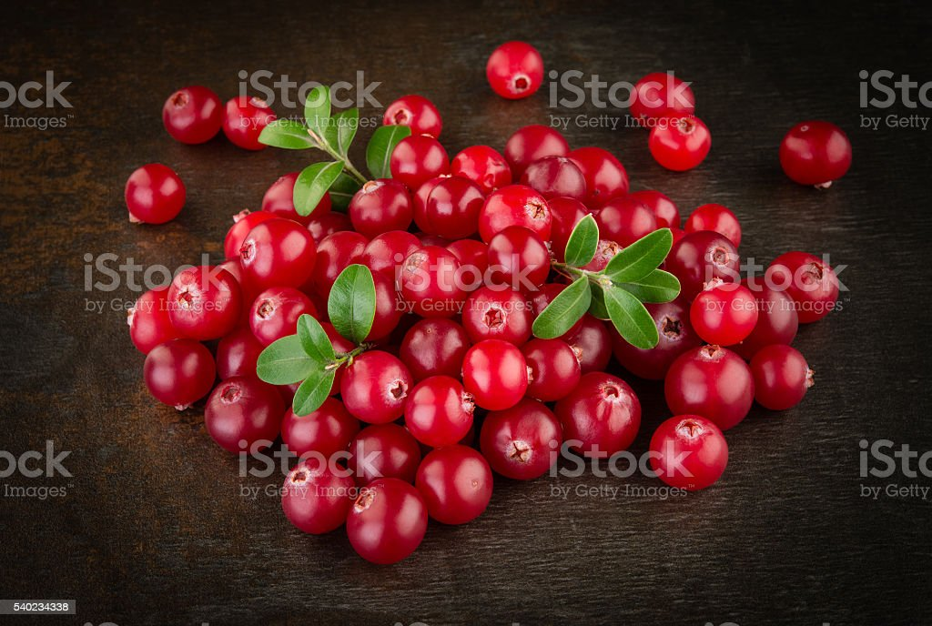 Organic cranberries with leaves. stock photo