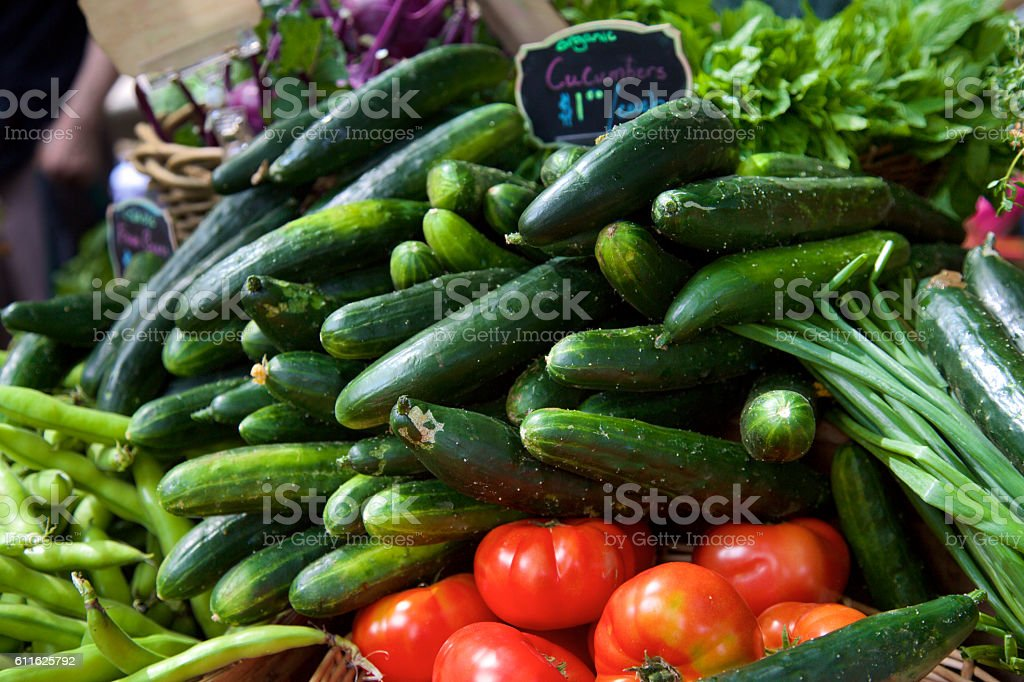Organic Cucumbers stock photo