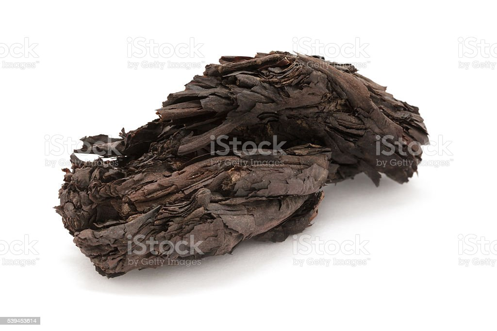 Organic dry barks of Ratan Jot (Alkanna tinctoria). stock photo