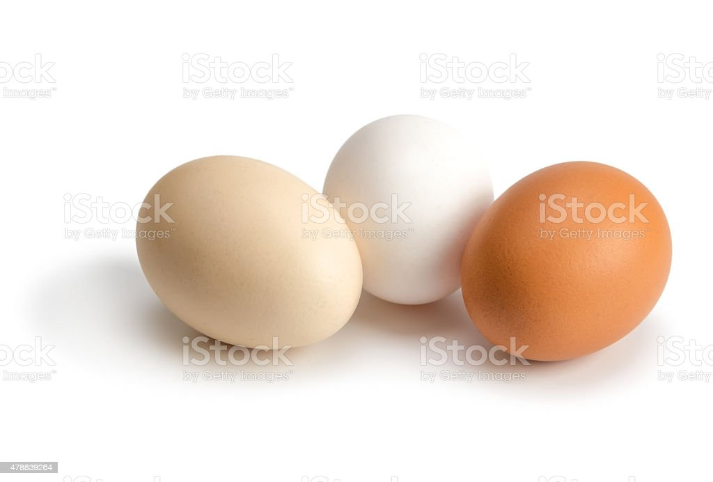 organic eggs of different colors stock photo