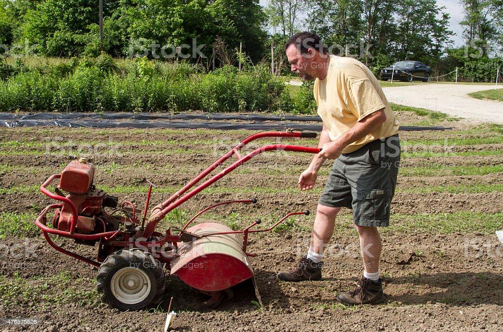Organic Farmer Cultivating Between Garden Rows stock photo
