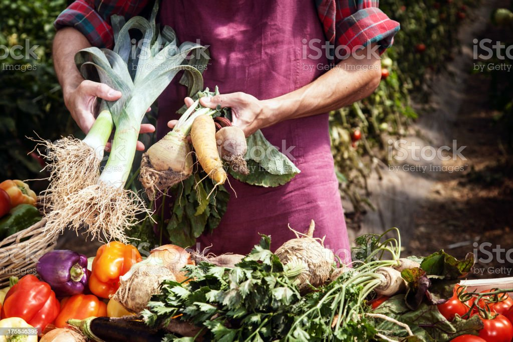 Organic Farmer stock photo