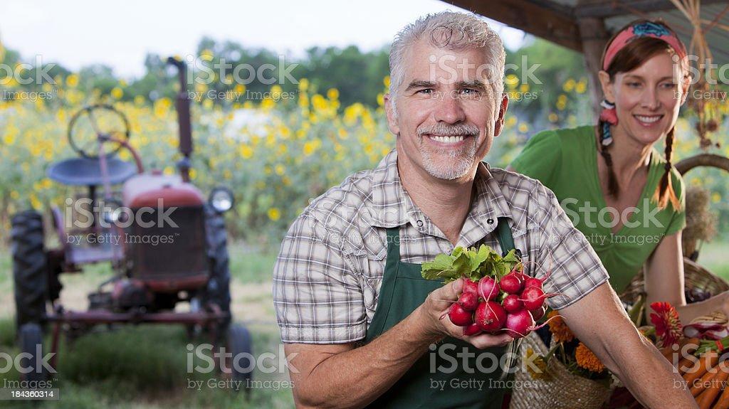 Organic farmers royalty-free stock photo