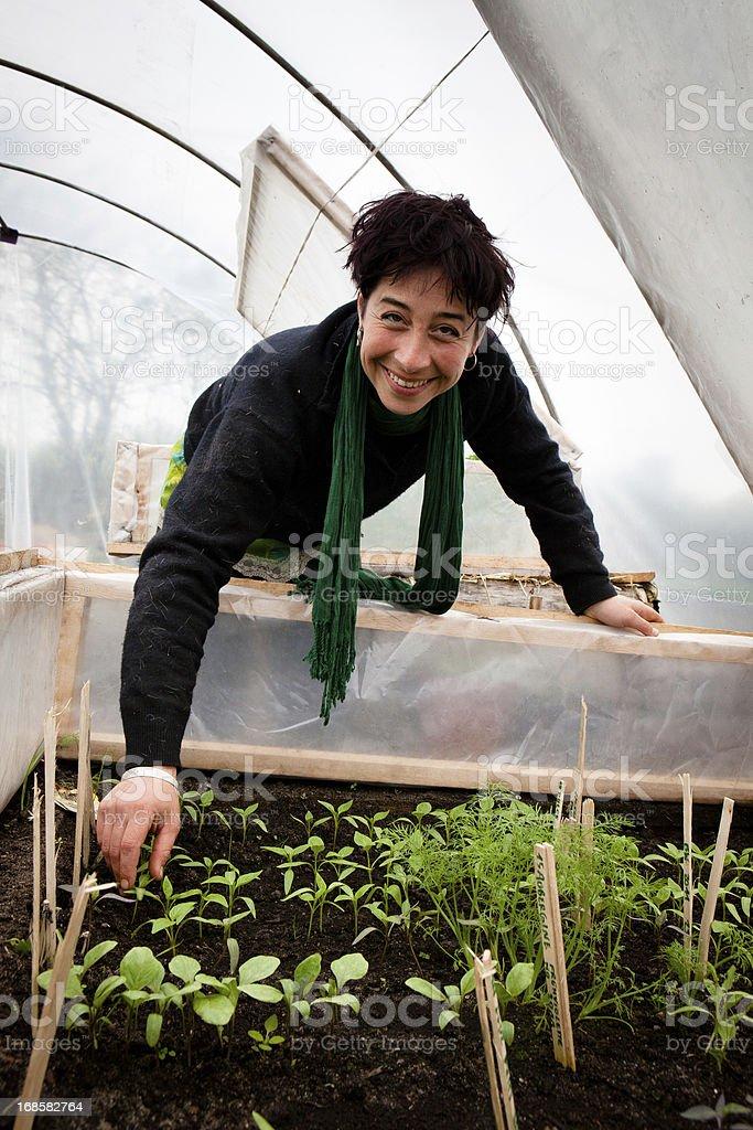 Junger landwirt bei der arbeit  Biologische Landwirtschaft Junger Landwirt Arbeiten An ...