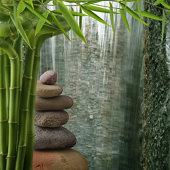 Organic Feng Shui