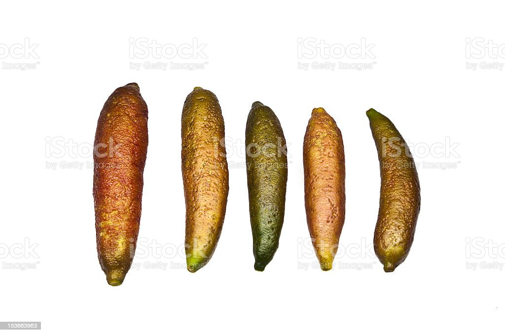 Organic Finger Lime royalty-free stock photo
