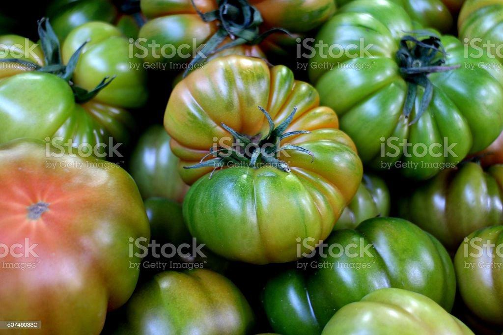 Organic fresh green tomatoes in the basket stock photo