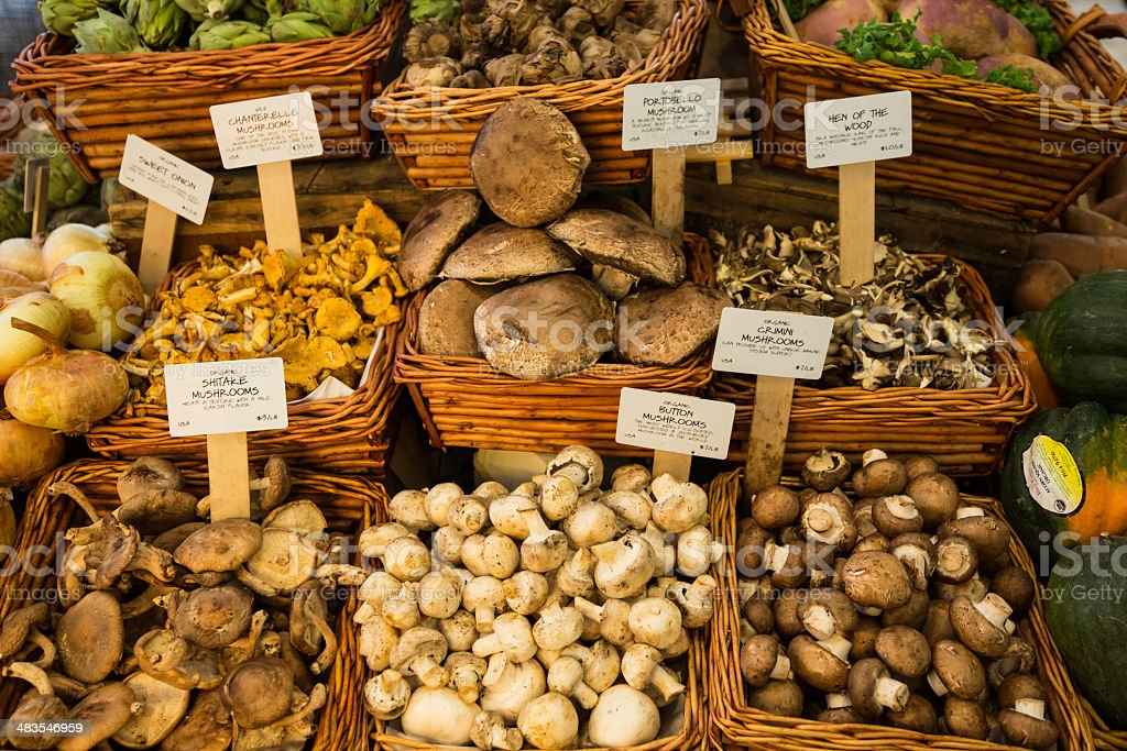 Organic Fresh Mushrooms in Market, New York City stock photo