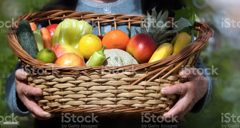 Organic fruit and vegetable - in hands of an old woman stock photo