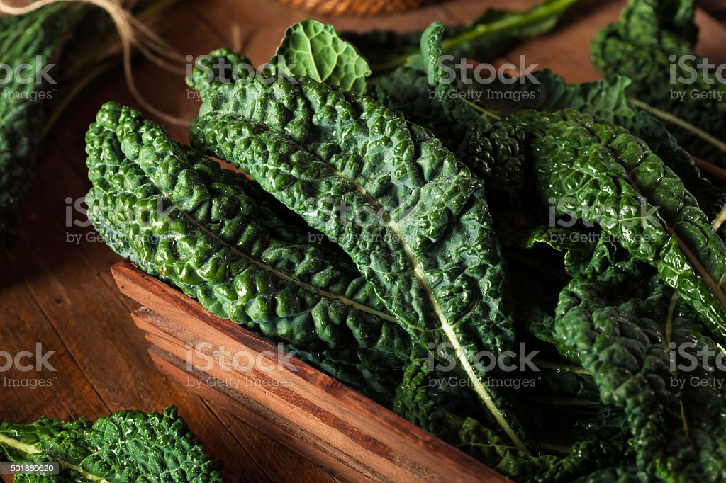 Organic Green Lacinato Kale stock photo