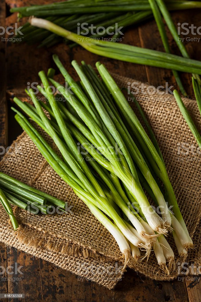Organic Healthy Green Onion stock photo