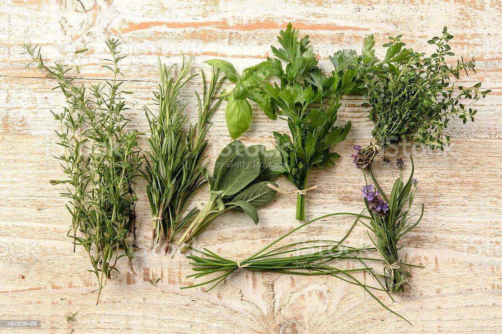 Organic Herbs stock photo
