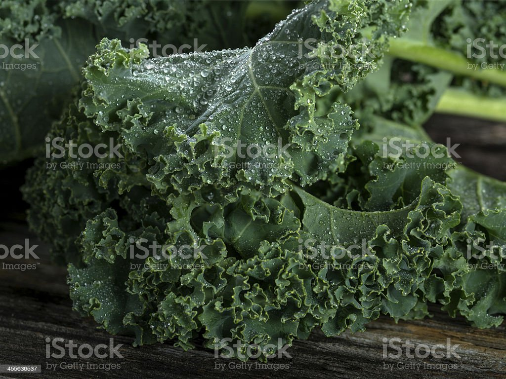 Organic Kale stock photo