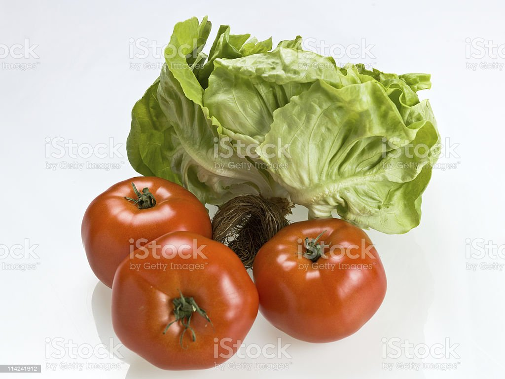 Organic living lettuce and tomatoes royalty-free stock photo