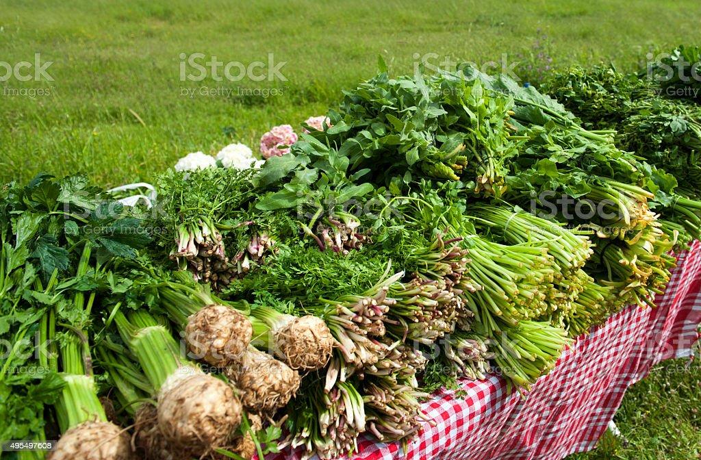 organic market on the grass area stock photo