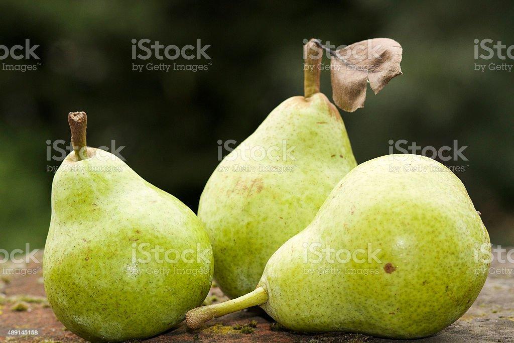 Organic pere foto stock royalty-free