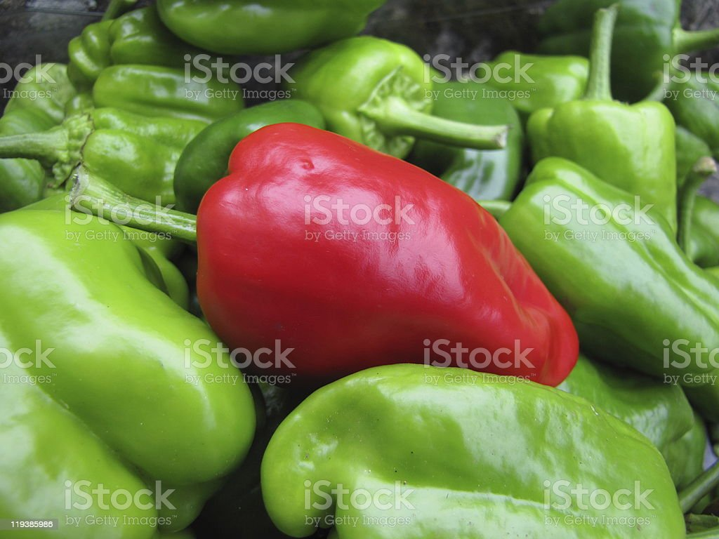 Organic peppers stock photo