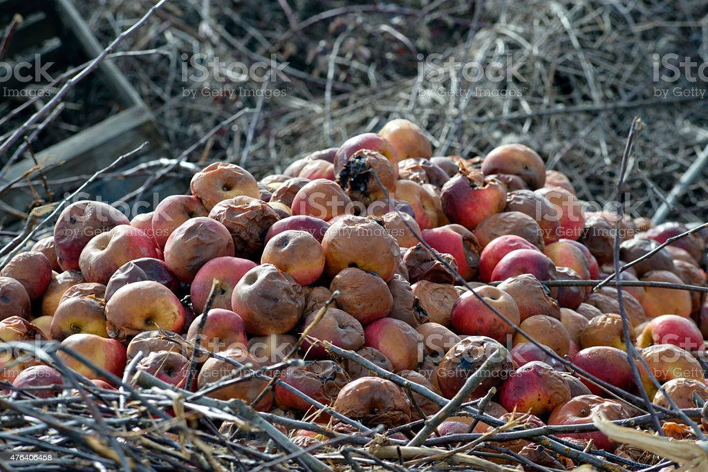 Organic pollution,soil acidification stock photo