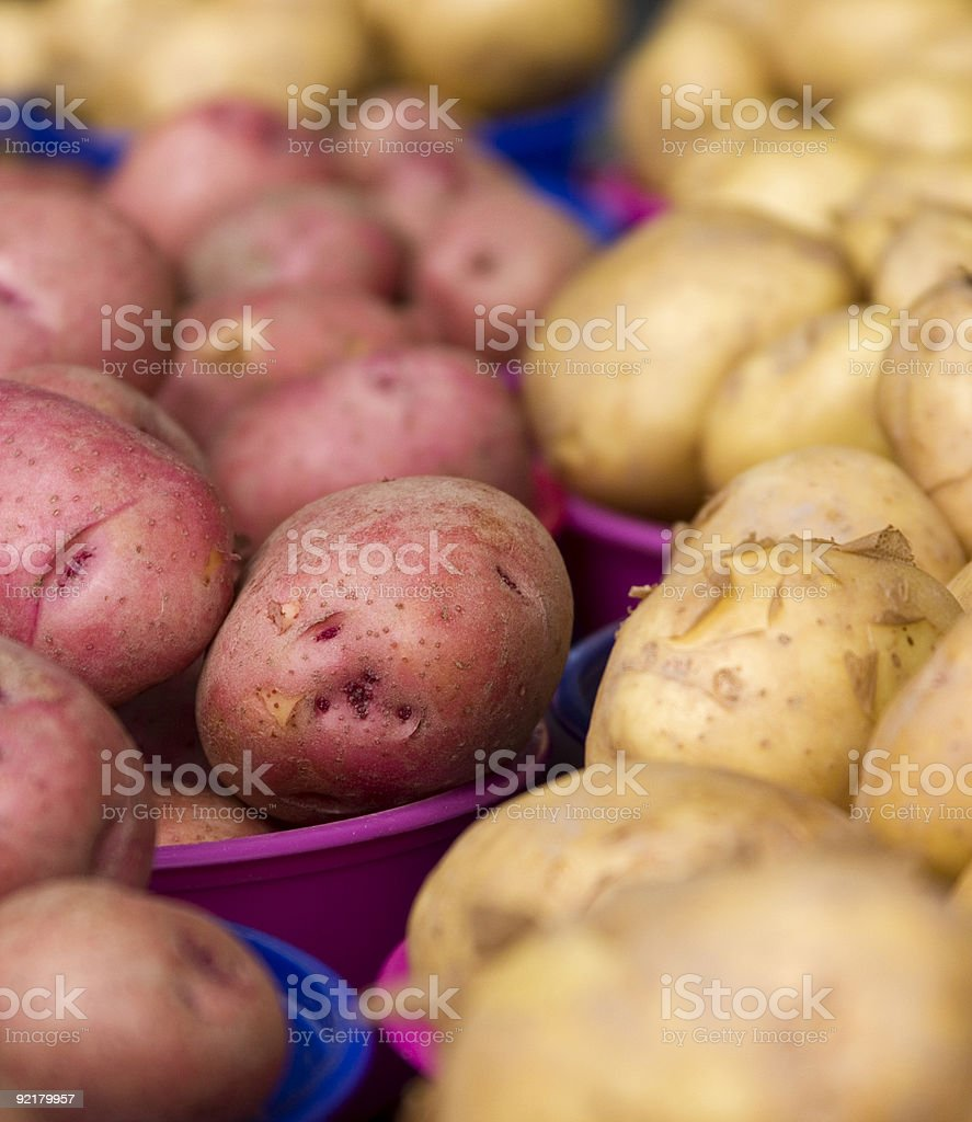 Organic Potatoes royalty-free stock photo