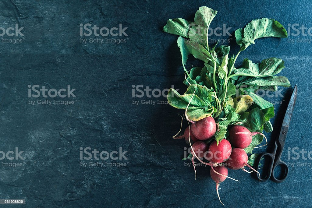 Organic radishes on the table stock photo