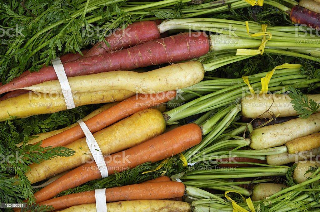 Organic Rainbow Carrots Ready for Shipping stock photo