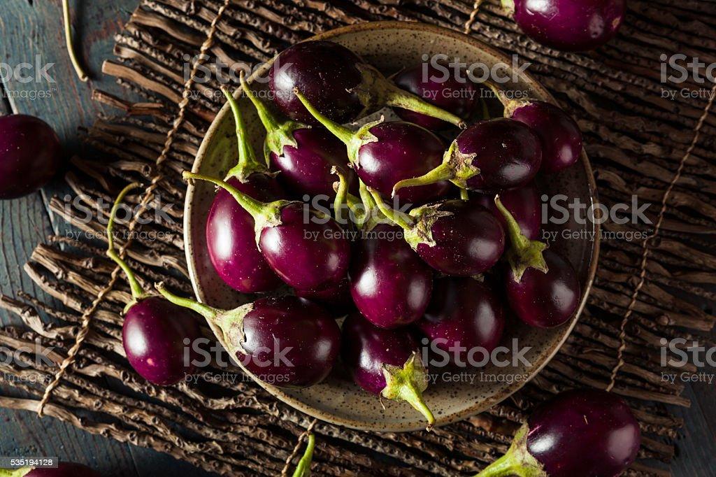 Organic Raw Baby Indian Eggplants stock photo