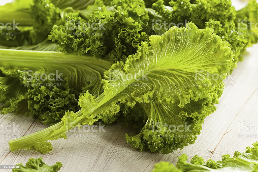 Organic Raw Mustard Greens stock photo