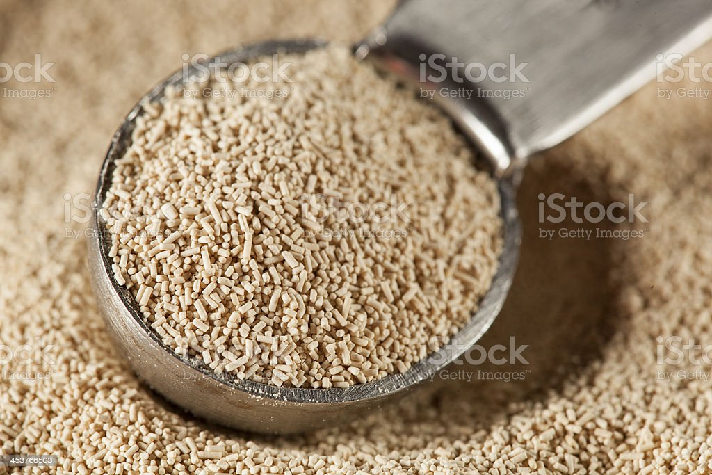 Organic Raw Yeast for baking bread stock photo