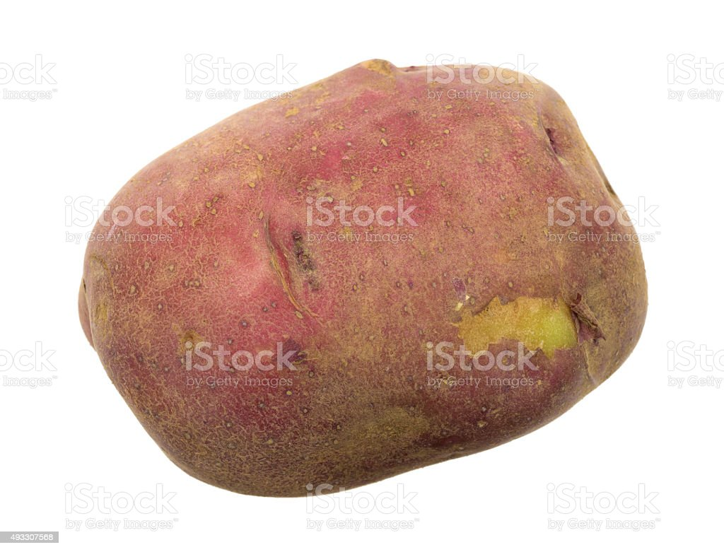 Organic red potato with blemish on white background stock photo