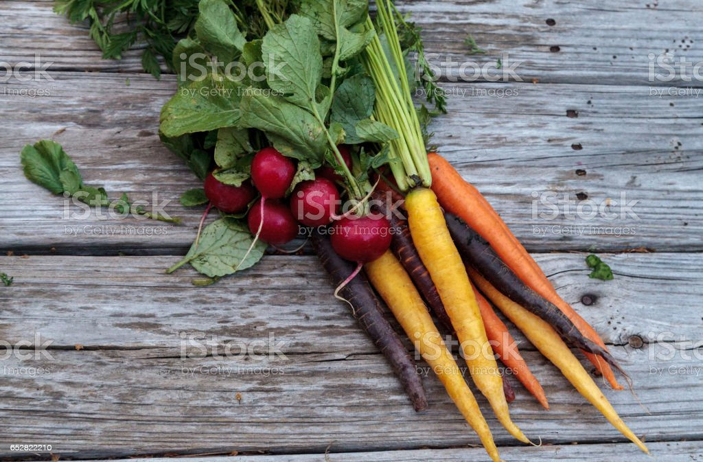 Organic red radishes and carrots stock photo