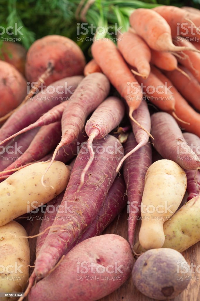 Organic Root Vegetables royalty-free stock photo