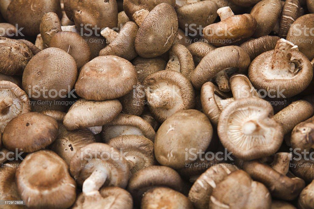 Organic Shiitake Mushrooms stock photo