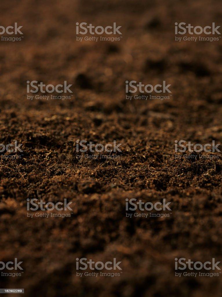 Organic Soil royalty-free stock photo