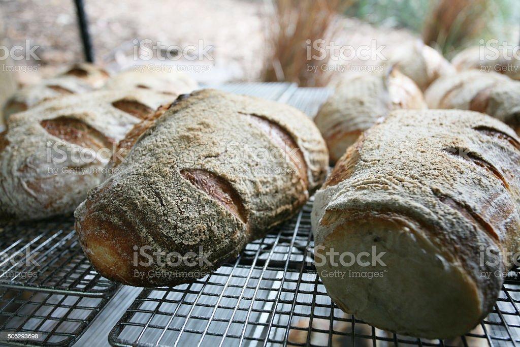 Organic Sour Dough Bread stock photo