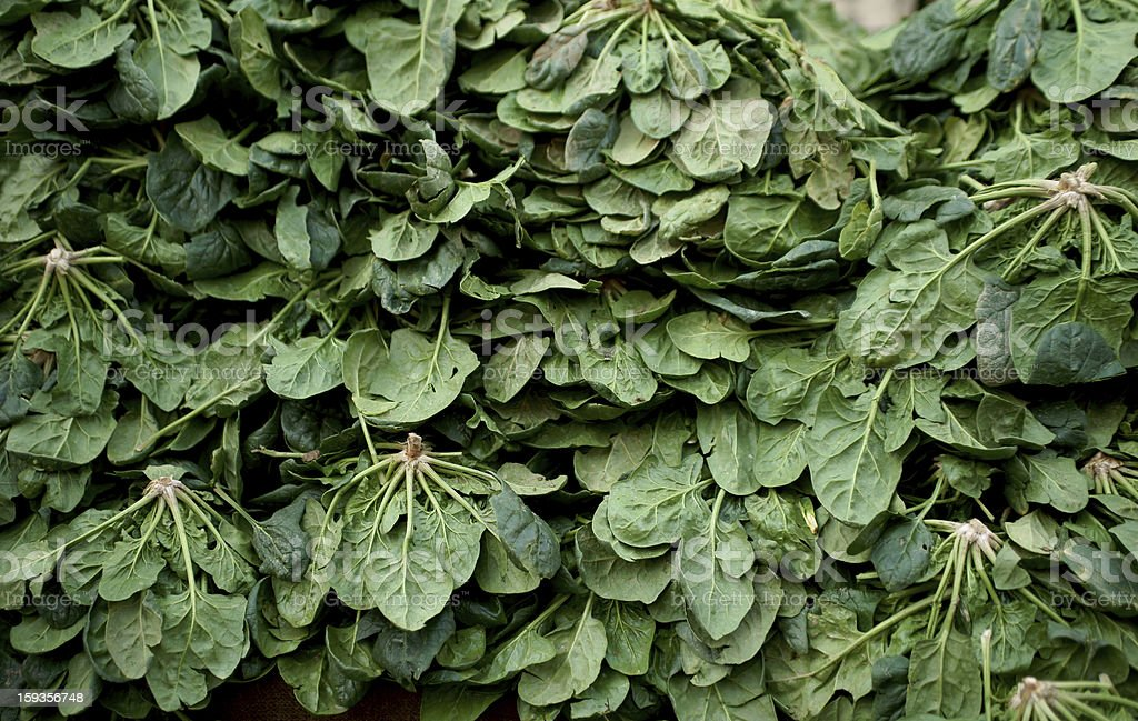 organic spinach royalty-free stock photo
