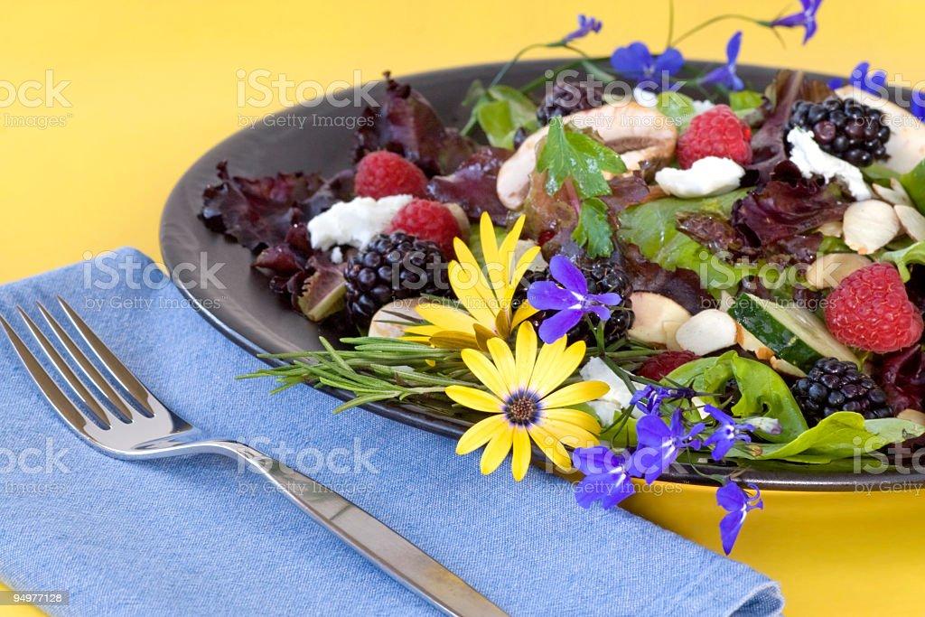 Organic Summer Salad royalty-free stock photo