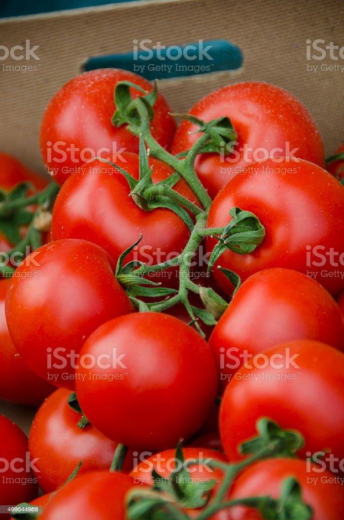 Organic Tomatoes at Farmers Market in San Gimignano, Italy stock photo