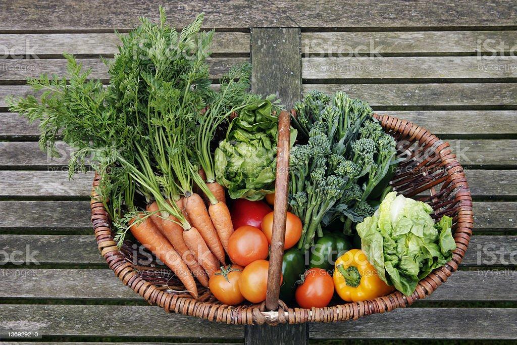 Organic Vegetable Harvest stock photo
