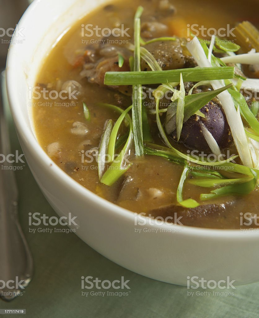 Organic vegetable soup stock photo
