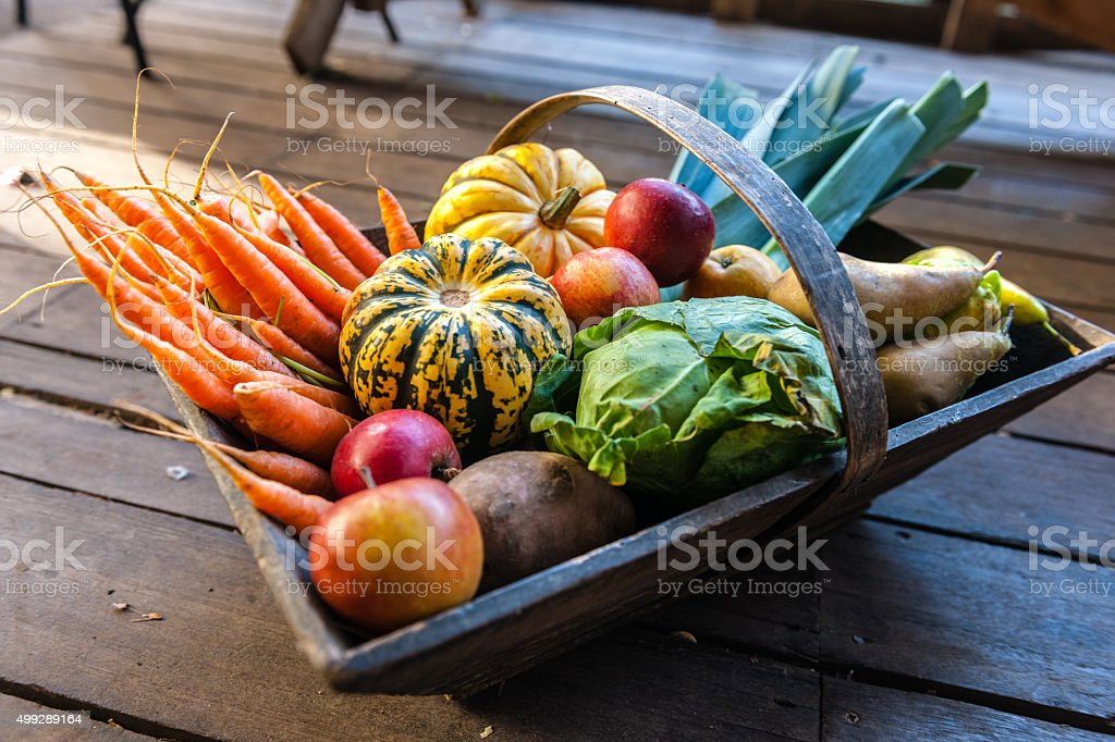 Organic Vegetables and Fruit in Wooden Basket, Urban Garden, London stock photo