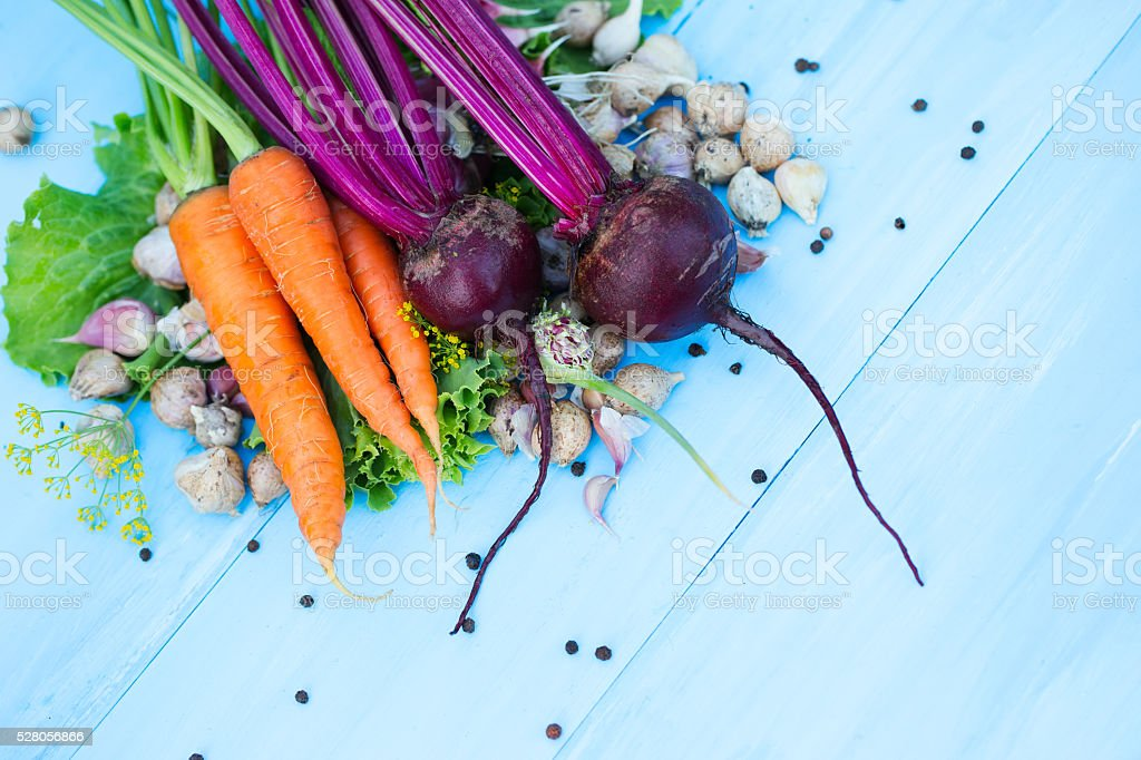 Organic vegetables from Russia. stock photo