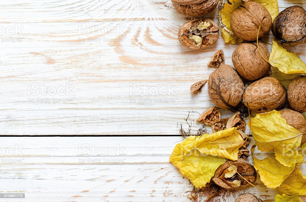 Organic walnuts with yellow leaves on white background stock photo