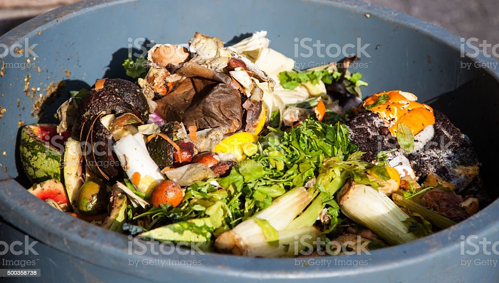 Organic waste stock photo
