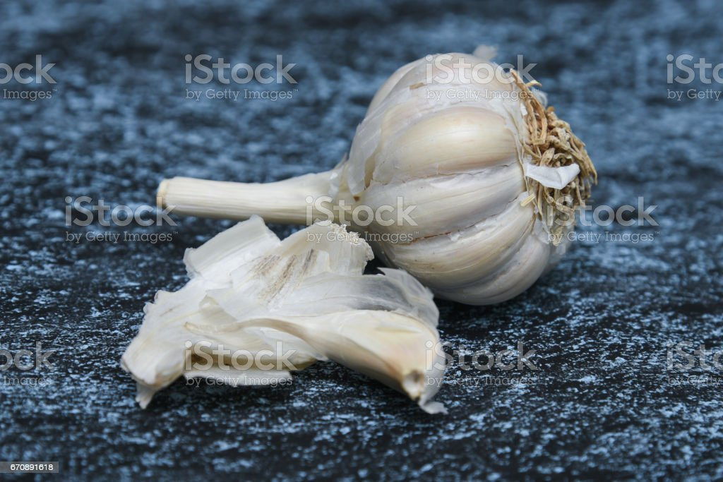 Organic white garlic bulb stock photo