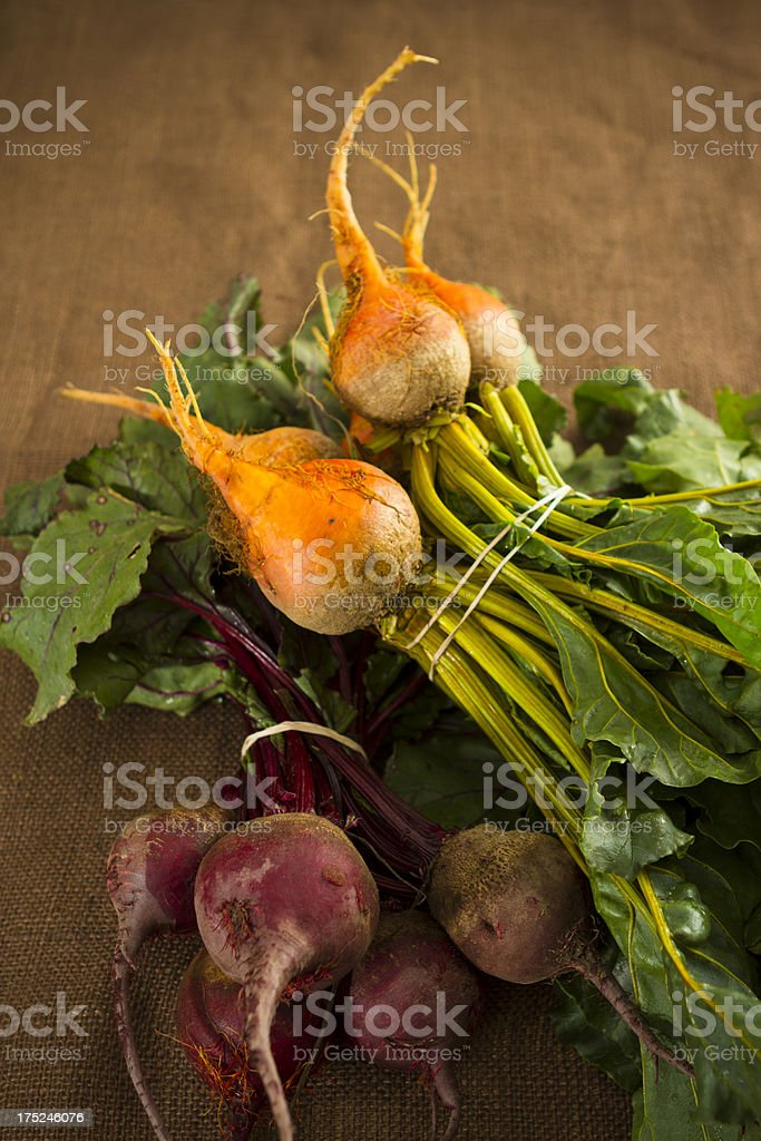 Organic Yellow & Red  Beets On Burlap royalty-free stock photo