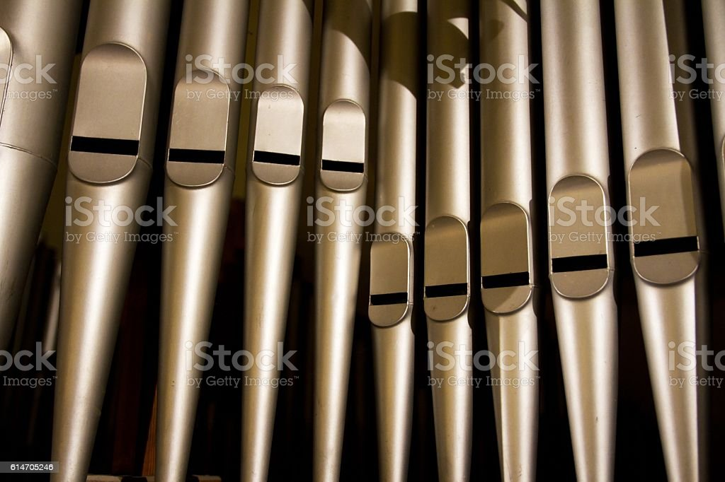 organs from very close 1 stock photo