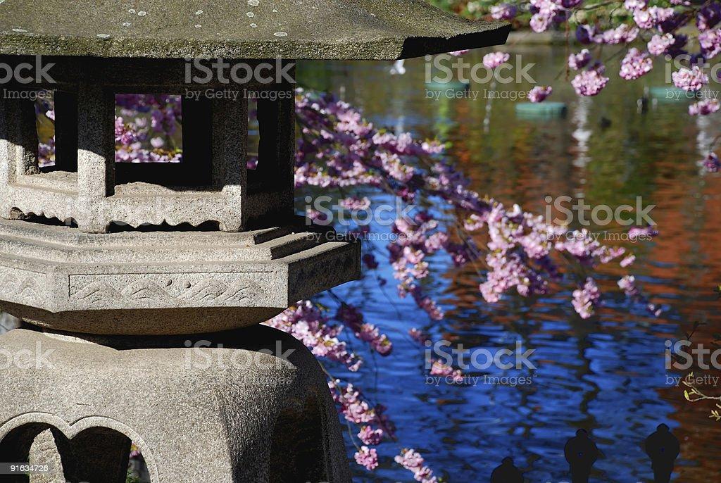Oriental garden in spring time stock photo