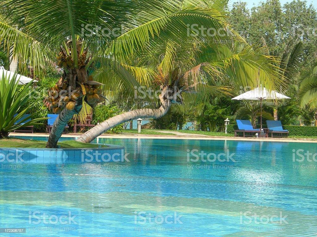 Oriental Swimming Pool 07 royalty-free stock photo
